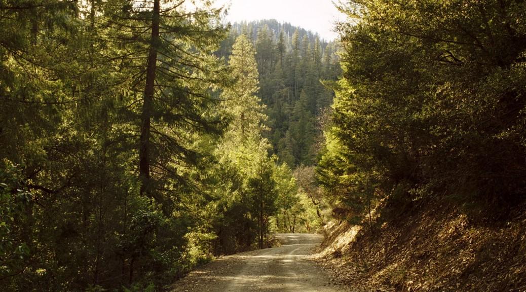 Klamath_National_Forest-16N05_March_05
